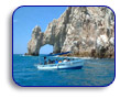 Cabo San Lucas Tours and Transportations,  Import Export Companies